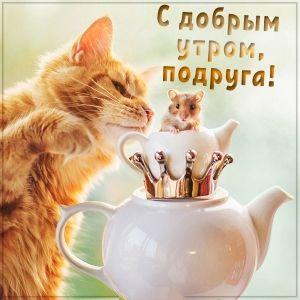 Доброе утро подружка