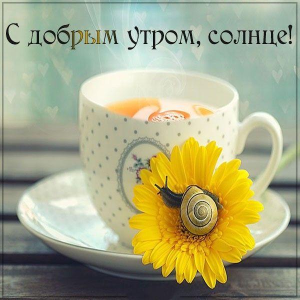 Доброе утро солнце