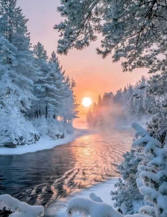Зимний день картинки