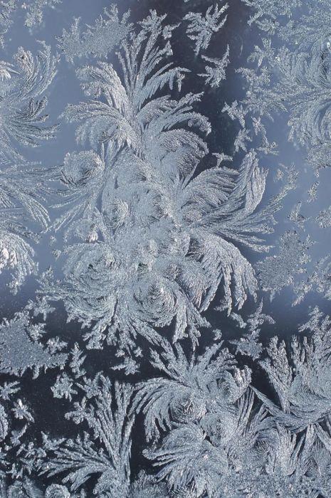 Зимние картинки бесплатно
