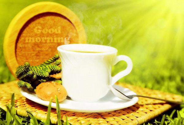 Доброе утро картинки природа
