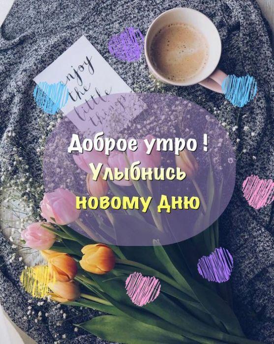 Доброе утро и добрый день бесплатно