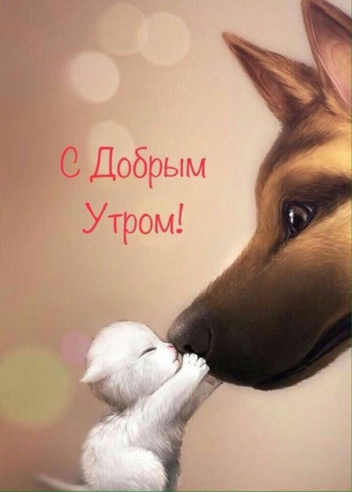 Доброе утро поцелуй