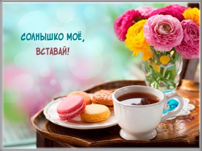 Красивые цветы с добрым утром