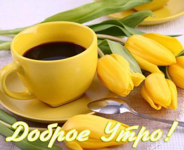 Поздравления с добрым утром бесплатно