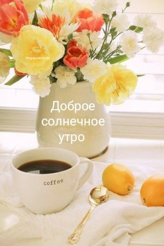Доброе солнечное утро
