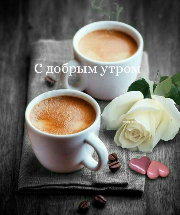 Доброе утро бесплатно новые