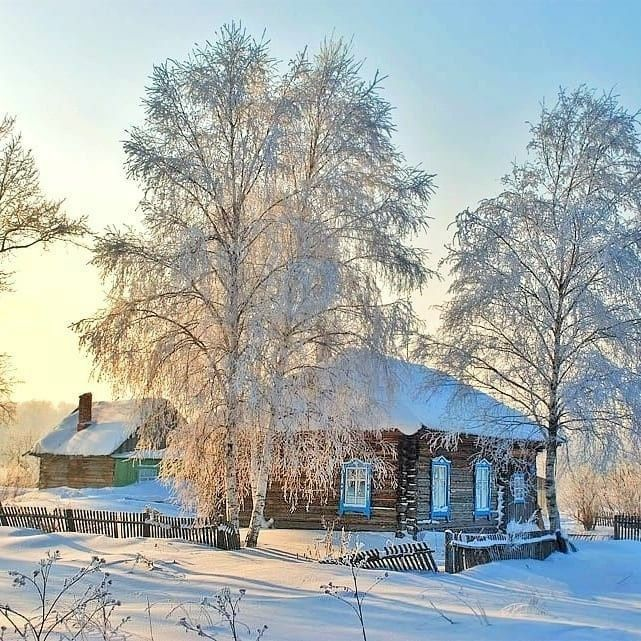 Скачать бесплатно зимние картинки