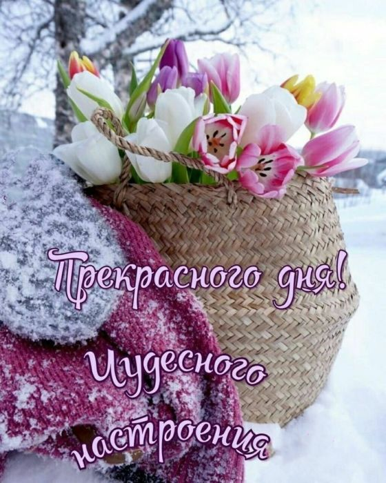 Картинки зимнее утро хорошего дня