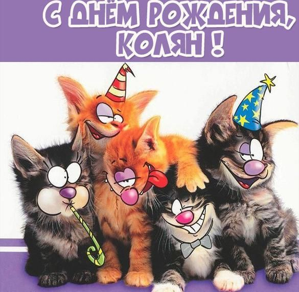 С днем рождения Николай