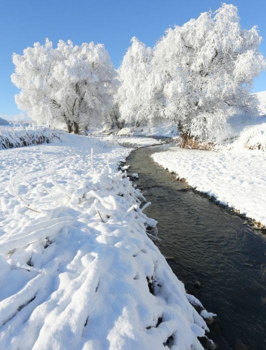 Зимняя природа картинки
