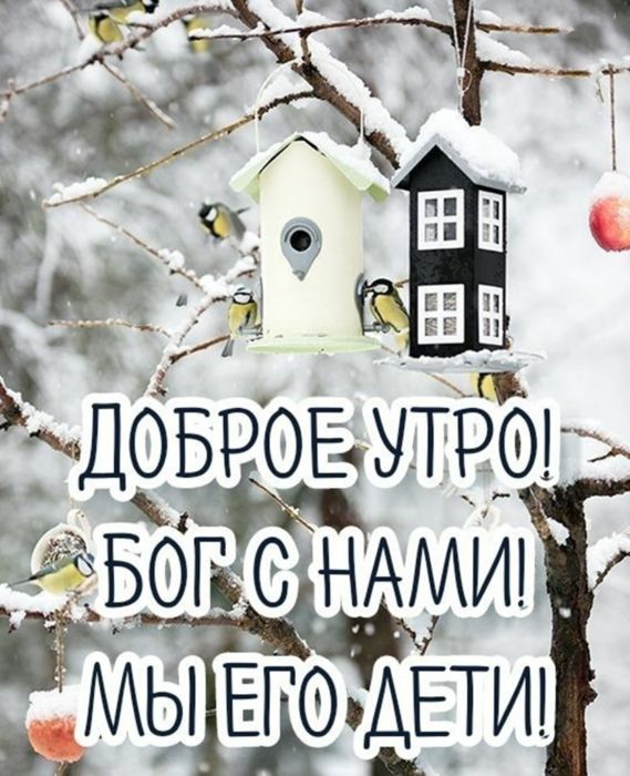 С добрым утром картинки новые зимние