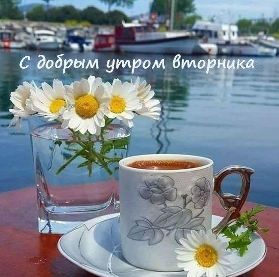 Скачать доброе утро вторника