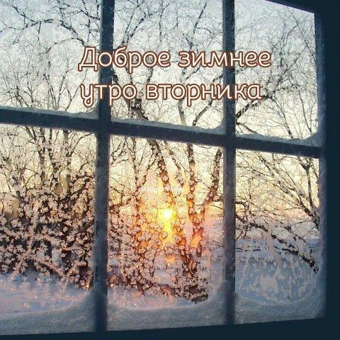 Доброе утро вторника зима