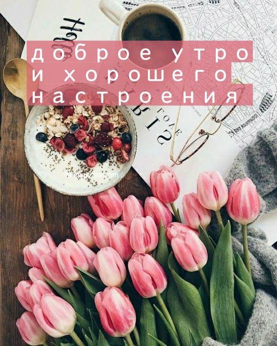 С добрым утром и хорошим настроением бесплатно