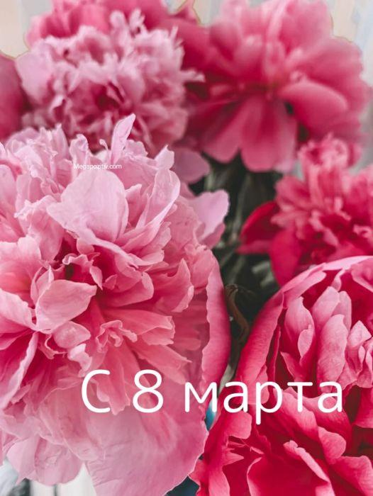 Поздравление с 8 марта женщинам