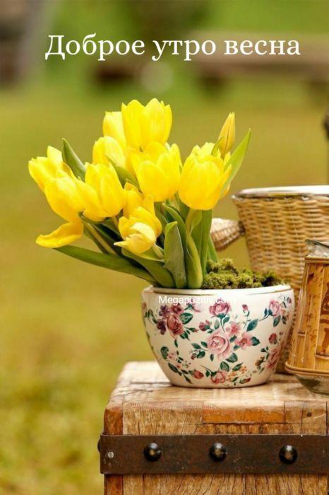 Открытки с добрым утром весна