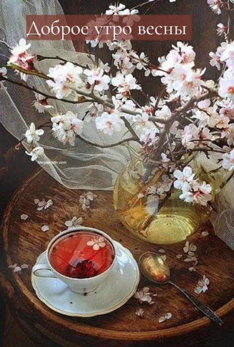 Доброе утро ранняя весна