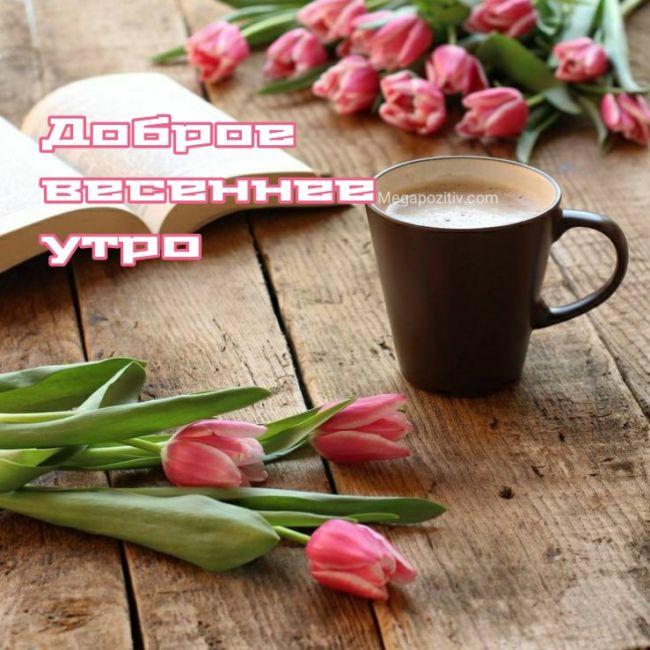 Бесплатные открытки с добрым утром весна