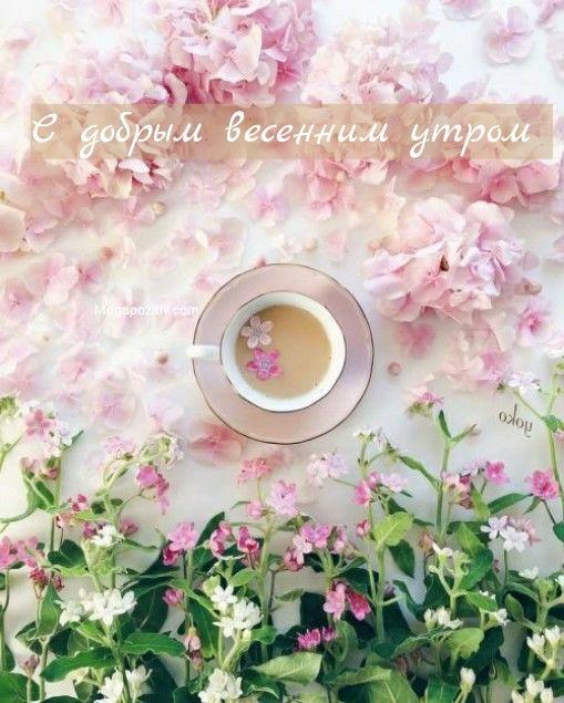 Весеннее утро картинки