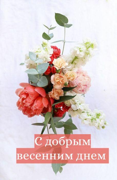 Картинки добрый весенний