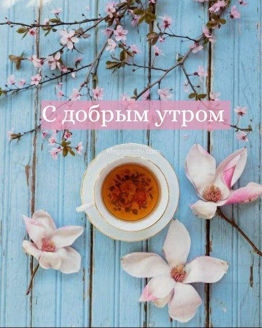 Картинки с добрым утром весенние