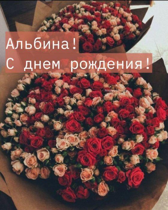 С днем рождения Альбина