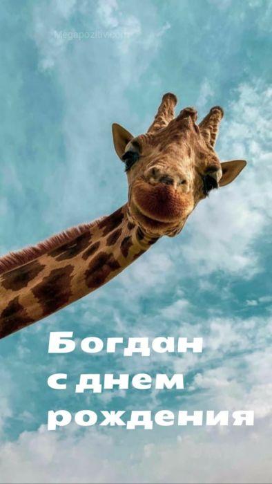 С днем рождения Богдан