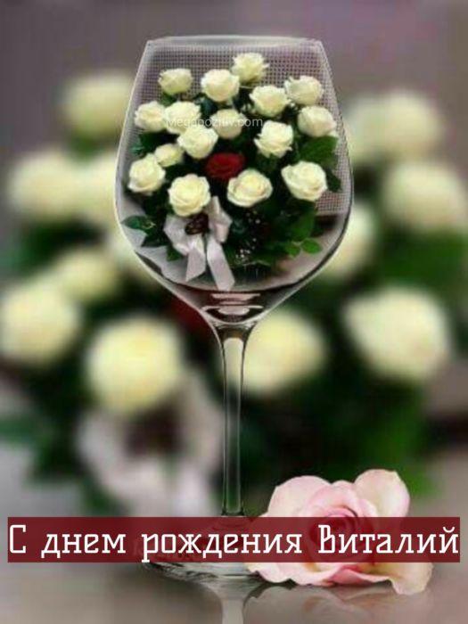 С днем рождения Виталий
