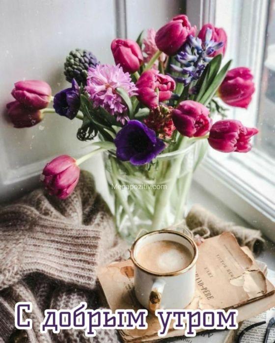 Весеннее утро картинки красивые