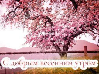 С добрым весенним утром картинки красивые