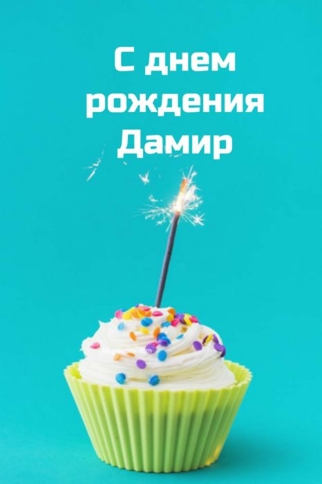 С днем рождения Дамир