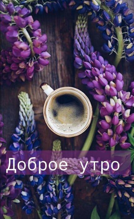 Доброе утро картинки красивые бесплатно