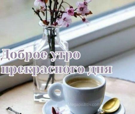 Доброе утро прекрасного дня картинки