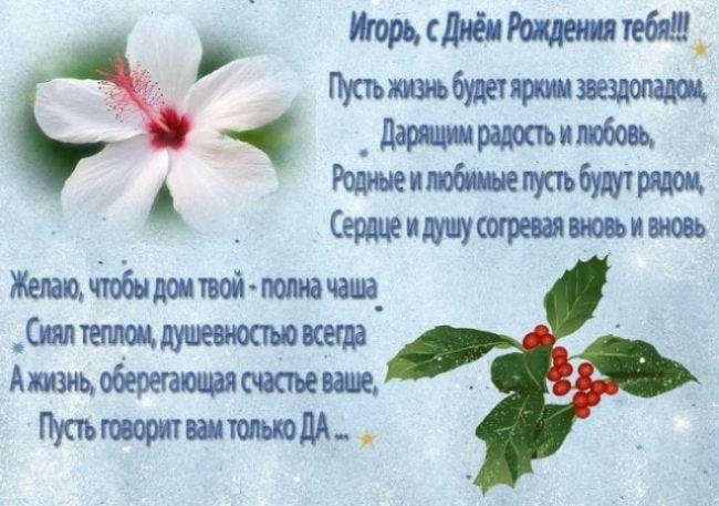 С днем рождения Игорь