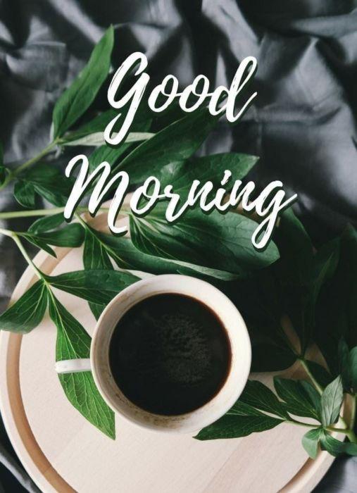Картинки с добрым утром новинки